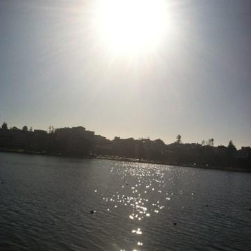 Beautiful sunny day